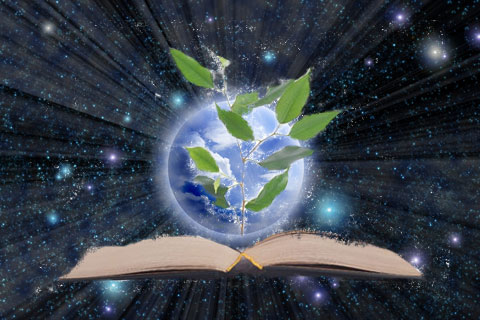 Akashic Records Reading