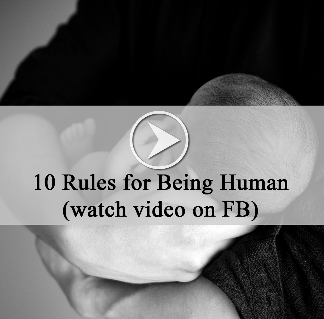 10 rules for being human pdf