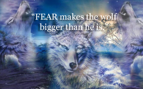 feed the wolf fear