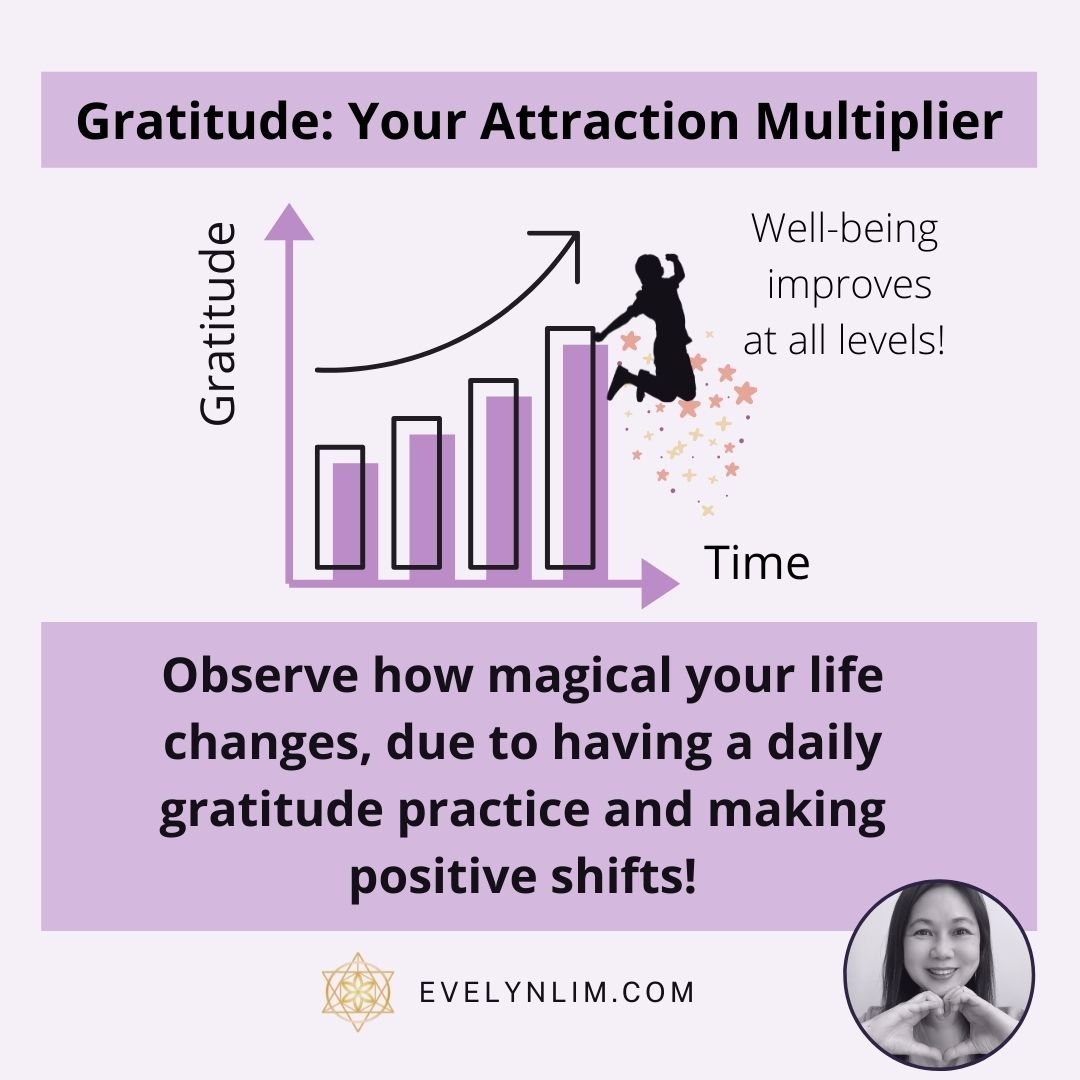 Daily Gratitude Attraction Multiplier